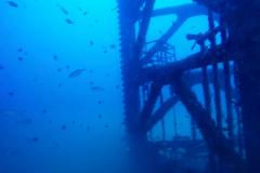 RGV-Reef-Photo-3