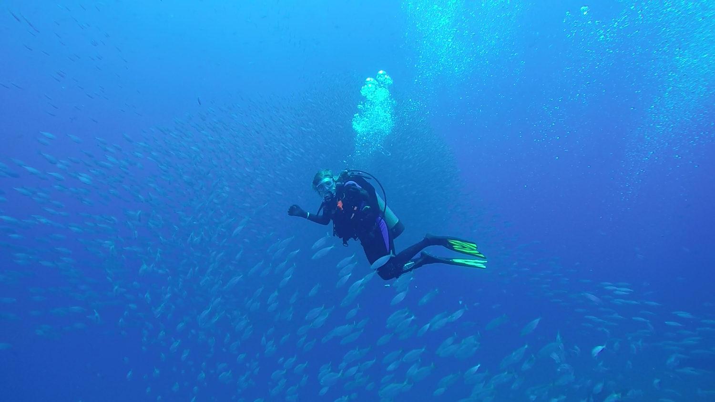 - rgv reef photo 31 scaled - RGV Reef