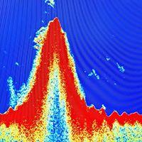 RGV Reef Underwater Sonar Photo