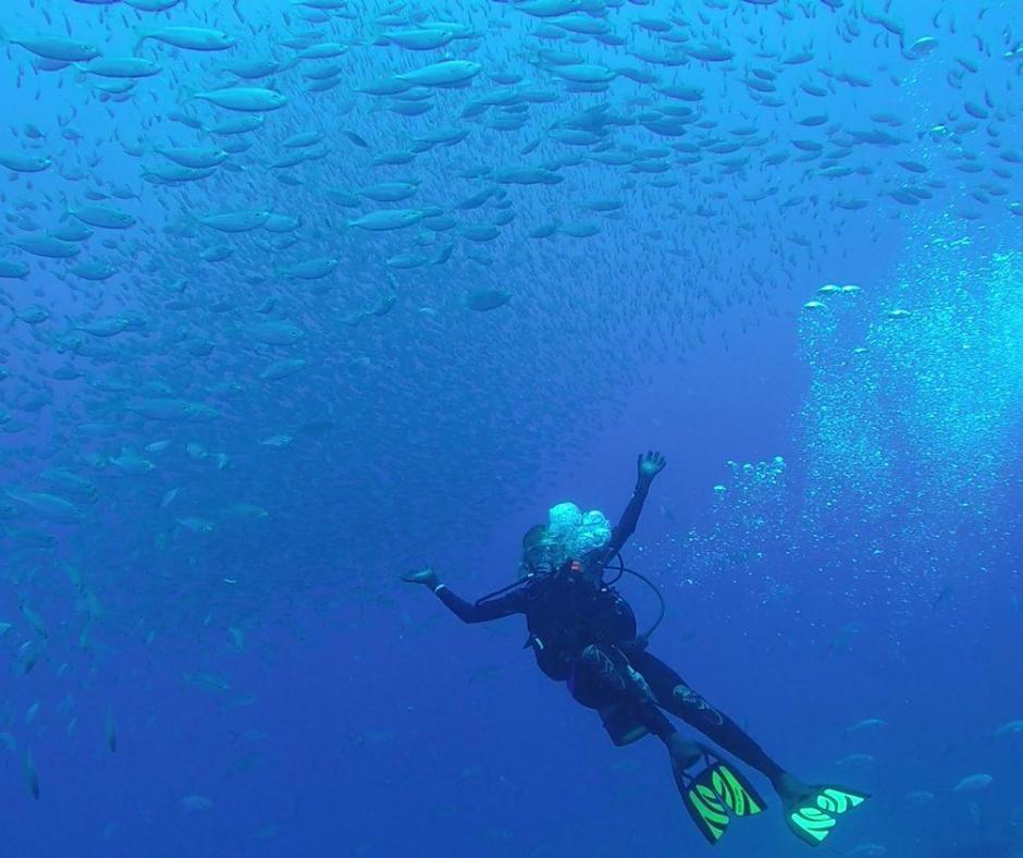 Photos of the RGV Reef (3)